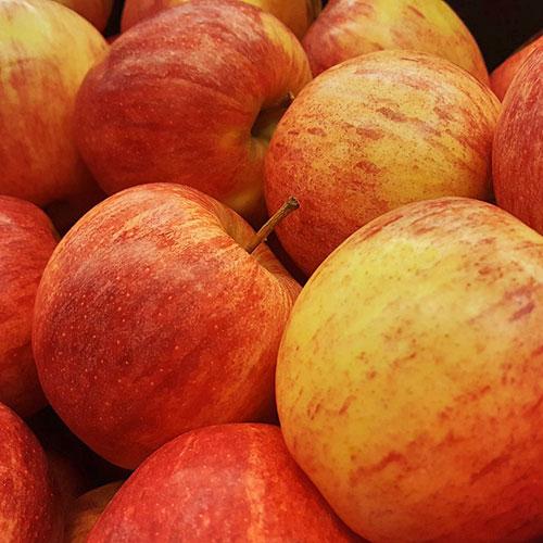 Frutícola